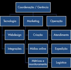 organograma-profissional-de-ecommerce